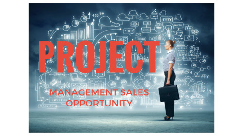 ideal-opportunity-for-independent-sales-reps-to-sell-the-services-of-leading-b2b-corporate-project-management-solutions-company